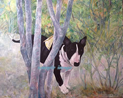 black and white bull terrier - a laidman dog pring