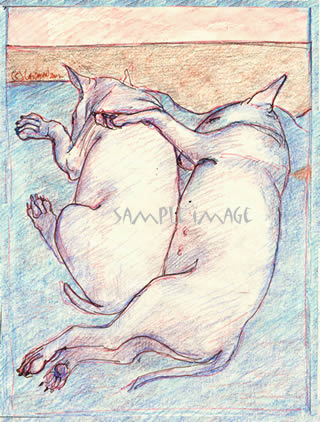 Sleeping Bull Terrier Buds - a Laidman Dog Print